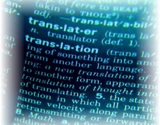 Our Translation Services